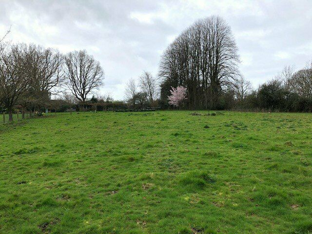 4 ACRE FIELD TO RENT WITH YARD AREA